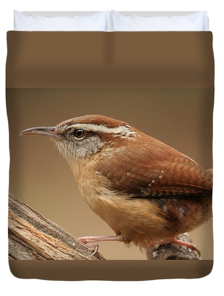 Duvet Cover featuring the photograph Carolina Wren by Daniel Reed