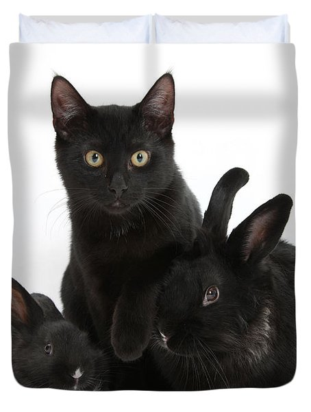 Cat And Rabbits Duvet Cover by Mark Taylor