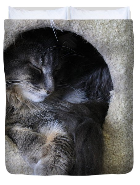 Cat In A Hole Duvet Cover by Mary-Lee Sanders