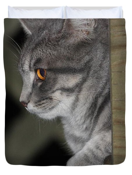 Cat On Steps Duvet Cover