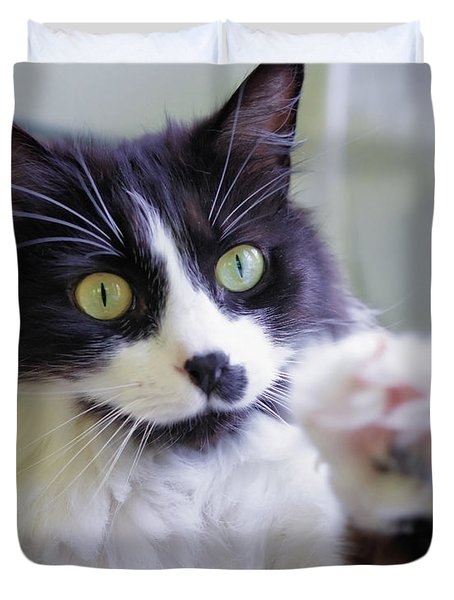 Cat Reaches For Camera Duvet Cover by Lori Coleman
