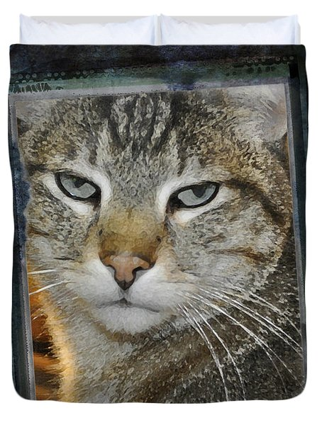 Cat Through A Tiny Window Duvet Cover by Mary Machare