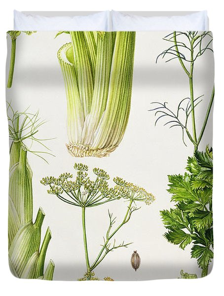 Celery - Fennel - Dill And Celeriac  Duvet Cover by Elizabeth Rice