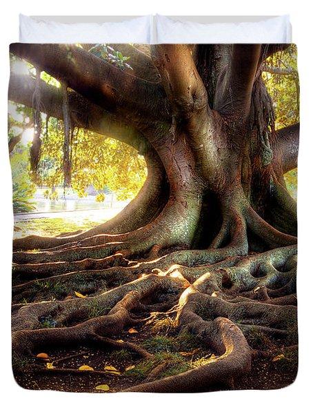 Centenarian Tree Duvet Cover by Carlos Caetano