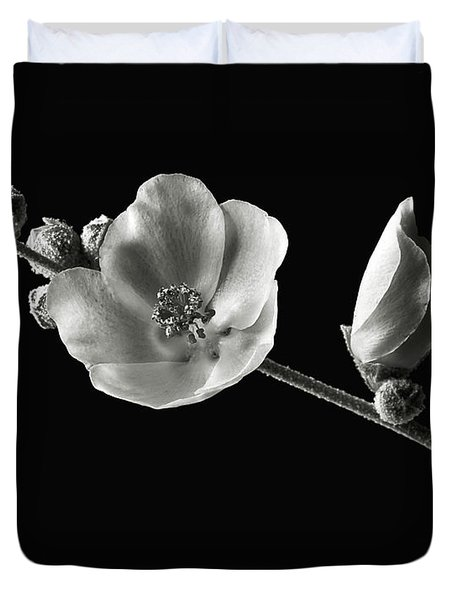 Chaparral Mallow In Black And White Duvet Cover by Endre Balogh