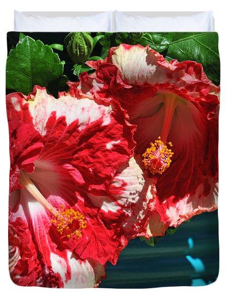 Cheery Cherry Appaloosa Duvet Cover by Lynn Bauer