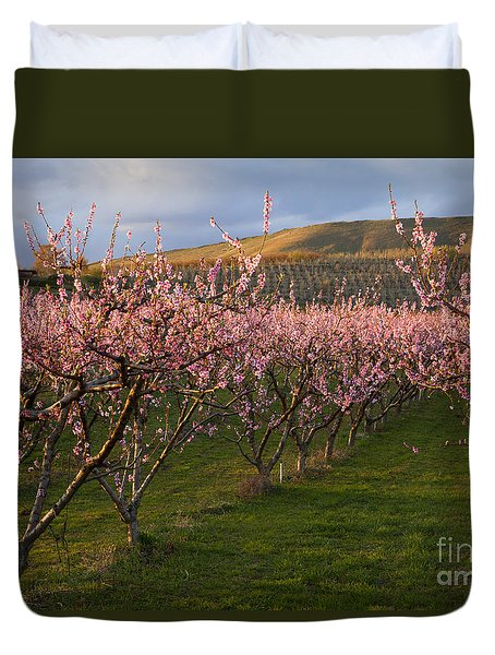 Cherry Blossom Pink Duvet Cover by Mike  Dawson