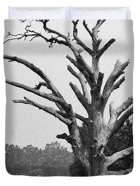 Chiseled Tree In Highway Duvet Cover by Sumit Mehndiratta