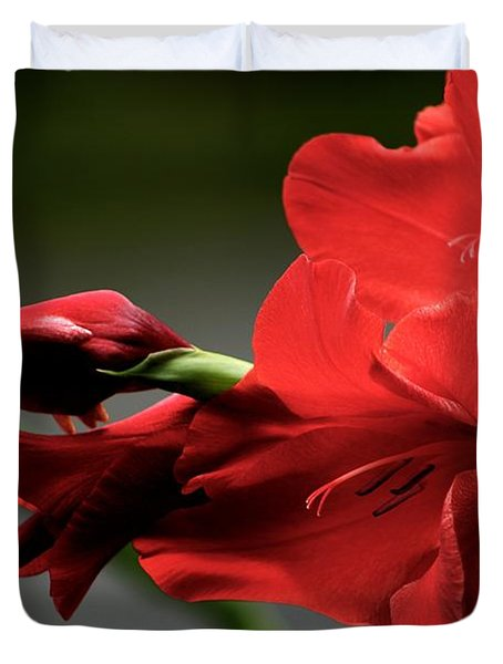 Chromatic Gladiola Duvet Cover