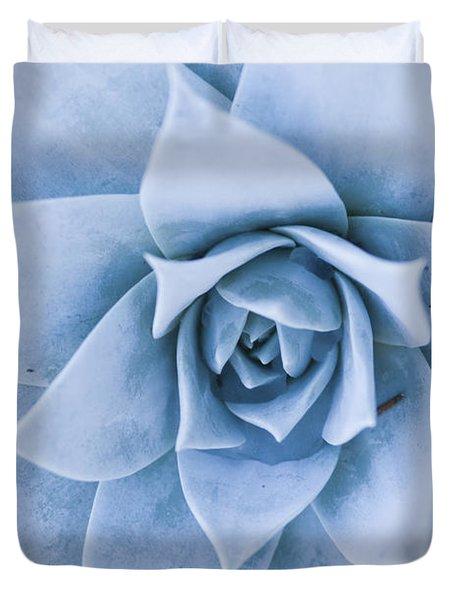 Close-up Of Blue Green Echeveria Duvet Cover