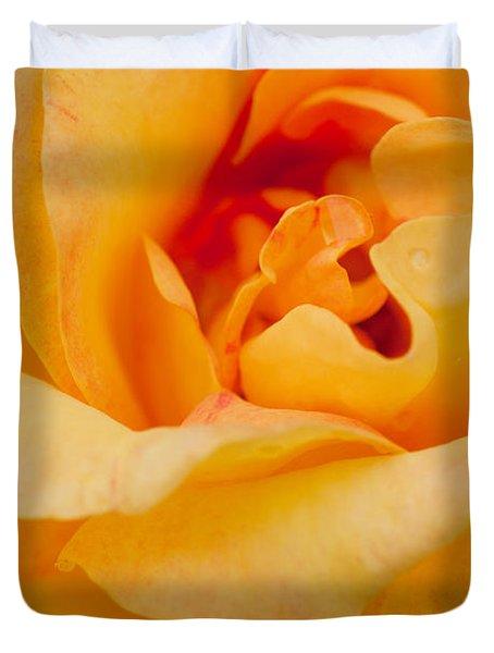 Closeup Yellow Rose Duvet Cover by Atiketta Sangasaeng