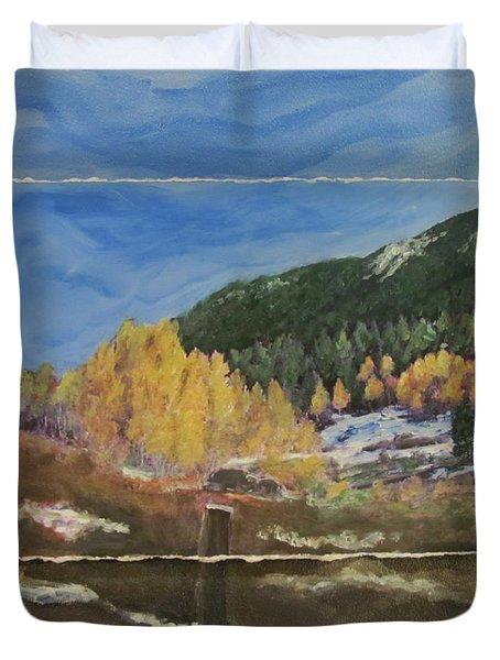 Colorado Almost Winter Duvet Cover by Anita Burgermeister