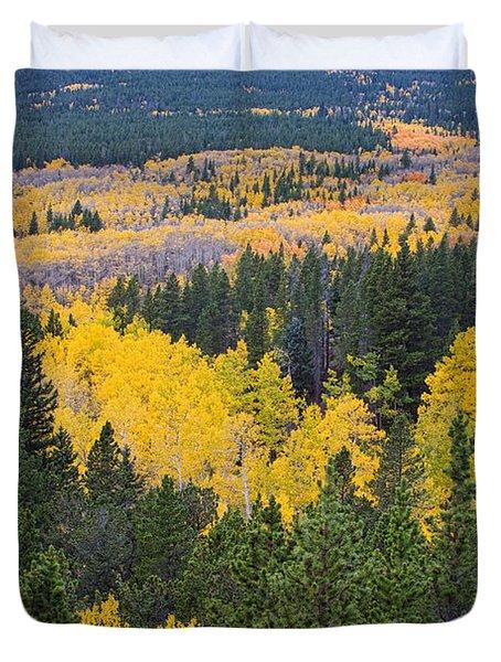 Colorado Autumn Aspens Boulder County  Duvet Cover by James BO  Insogna