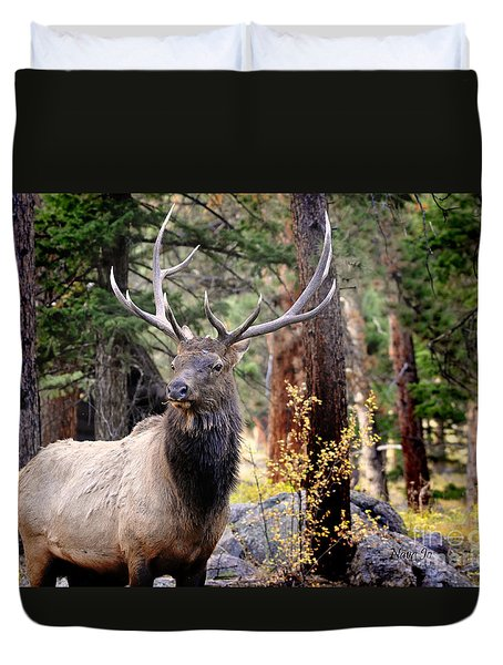 Duvet Cover featuring the photograph Colorado Elk by Nava Thompson