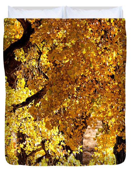 Duvet Cover featuring the photograph Colorado Gold by Colleen Coccia