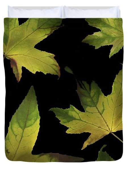 Colorful Autumn Leaves Duvet Cover by Deddeda