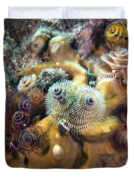 Colorful Christmas Tree Worms, Key Duvet Cover