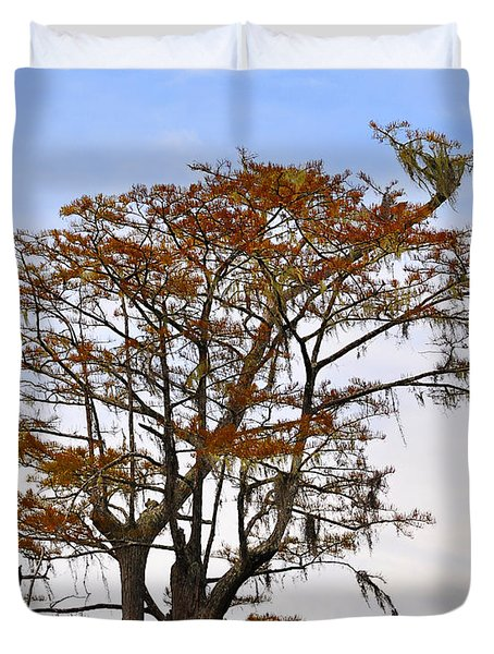 Colorful Cypress Duvet Cover by Al Powell Photography USA