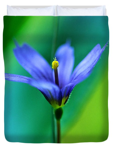 Common Blue Eyed Grass Sisyrinchium Duvet Cover