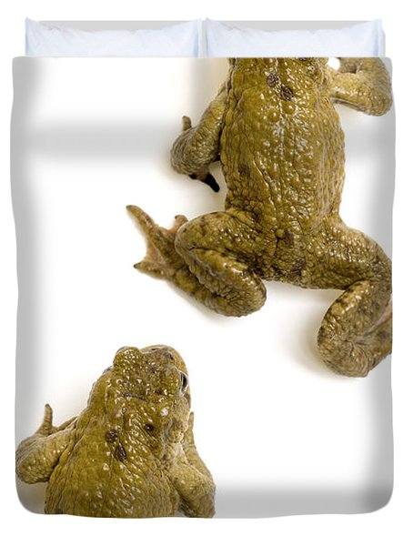 Common Toad Duvet Cover by Mark Bowler and Photo Researchers