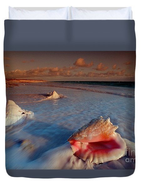 Conch Shell On Beach Duvet Cover by Novastock and Photo Researchers