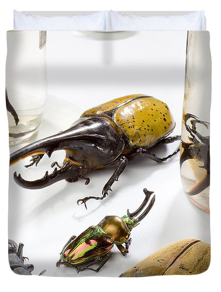 Confiscated Beetles Duvet Cover by Science Source