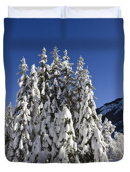 Coniferous Forest In Winter Duvet Cover by Konrad Wothe