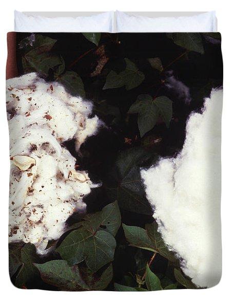 Cotton Comparison Duvet Cover by Photo Researchers