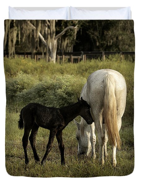Cracker Foal And Mare Duvet Cover