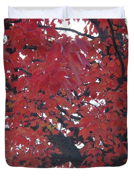 Crimson Leaves Duvet Cover