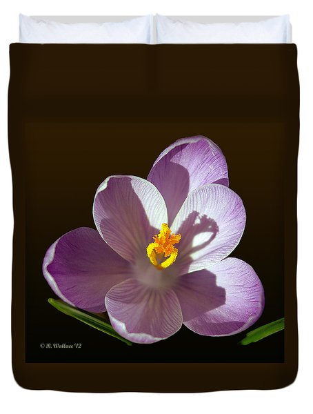 Crocus In Full Bloom Duvet Cover by Brian Wallace