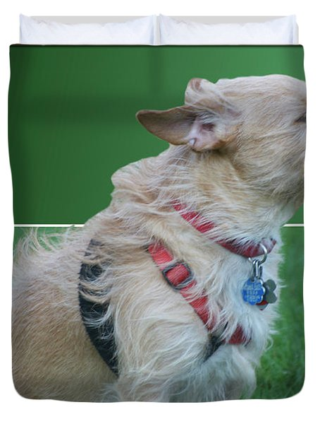 Cruz Enjoying A Warm Gentle Breeze 02 Duvet Cover by Thomas Woolworth