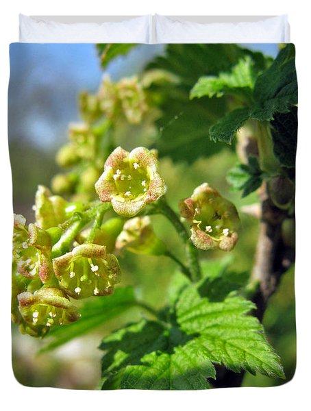 Currant In Bloom Duvet Cover by Ausra Huntington nee Paulauskaite