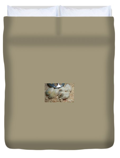 Duvet Cover featuring the photograph Cute And Fuzzy Chicks by Chalet Roome-Rigdon