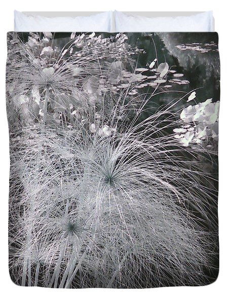 Cyperus Papyrus Duvet Cover by Christine Till