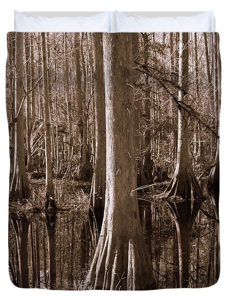 Cypress Swamp Reflection In Sepia Duvet Cover by Carol Groenen