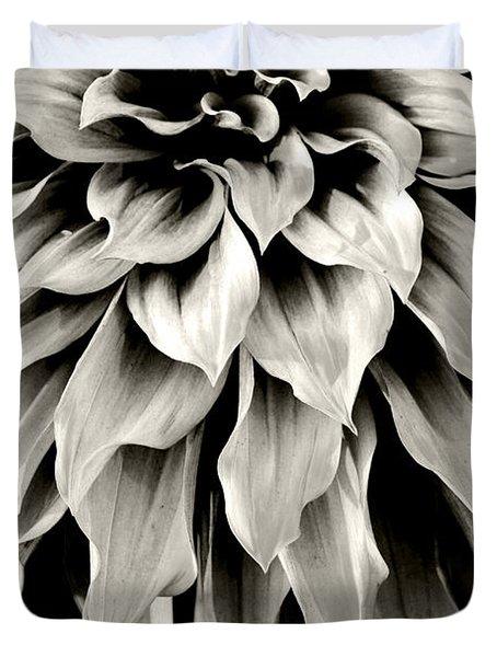 Dahlia Flower  Duvet Cover by Sumit Mehndiratta