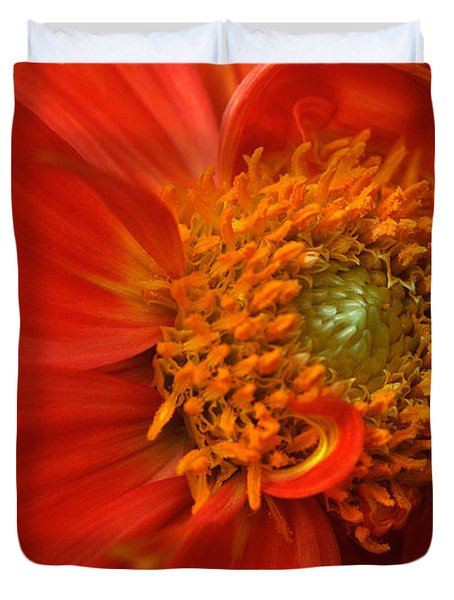 Dahlia Persuasion Duvet Cover by Kathy Yates