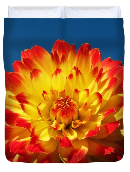 Dahlia 'procyon' Duvet Cover by Ian Gowland and Photo Researchers