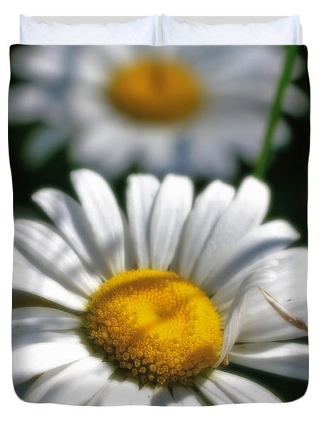 Daisies Aglow Duvet Cover