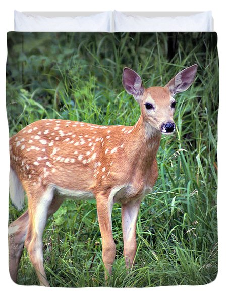 Darling Fawn Duvet Cover by Marty Koch