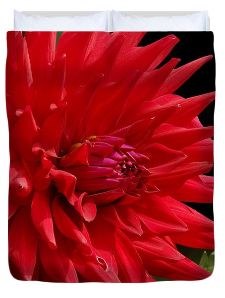 Decked Out Dahlia Duvet Cover by Cindy Manero