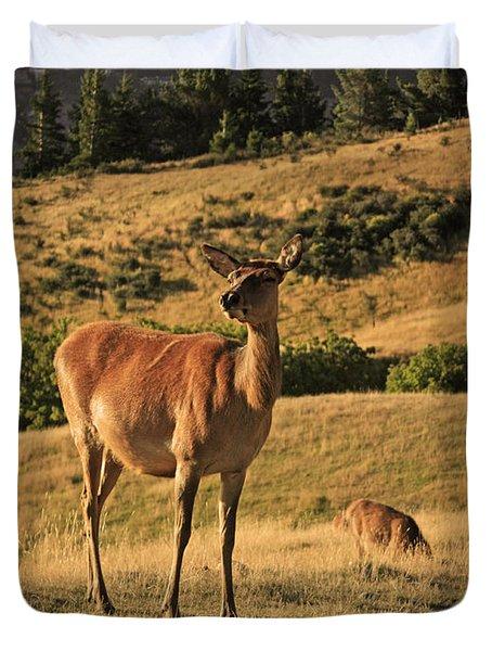 Deer On Mountain 2 Duvet Cover by Pixel Chimp