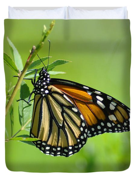 Delicate Wings Duvet Cover by Bill Cannon