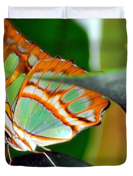 Duvet Cover featuring the photograph Dido Longwing Butterfly by Peggy Franz