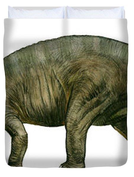 Diplodocus, A Prehistoric Era Dinosaur Duvet Cover by Sergey Krasovskiy