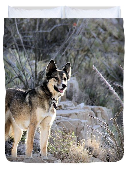 Dog In The Mountains Duvet Cover by Marlo Horne