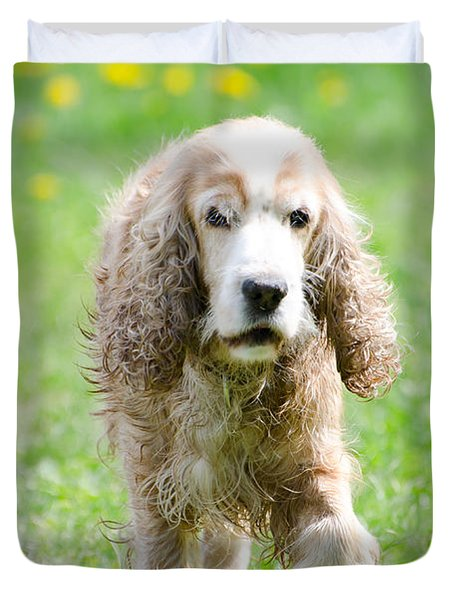 Dog On The Green Field Duvet Cover by Mats Silvan