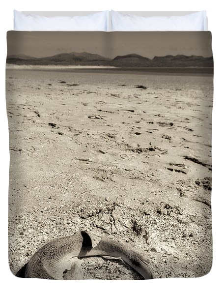 dogfish at Newborough Beach Duvet Cover by Meirion Matthias
