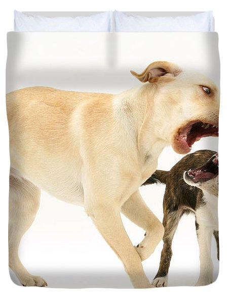 Dogs Playing Duvet Cover by Mark Taylor